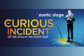 The Curious Incident of the Dog in the Night-Time Tickets - Miami