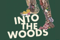 Into the Woods Tickets - New York City