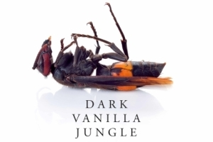 Dark Vanilla Jungle