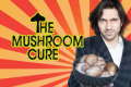The Mushroom Cure Tickets - New York City