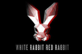 White Rabbit Red Rabbit Tickets - New York City