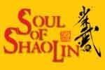 Soul of Shaolin