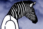 The Zebra Shirt of Lonely Children