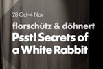 Psst! Secrets of a White Rabbit