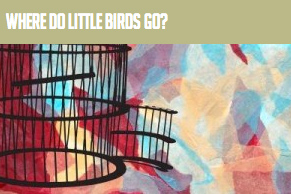 Where Do Little Birds Go?