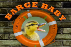 Barge Baby