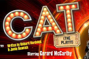 Cat - The Play!!!