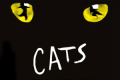 Cats Tickets - Blackpool