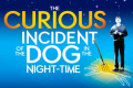 The Curious Incident of the Dog in the Night-Time Tickets - Sheffield