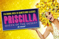 Priscilla - Queen of the Desert Tickets - Canterbury