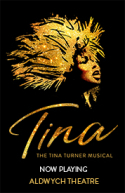 Tina - The Musical