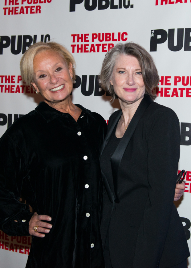 <p>Robin Skye and Annette O&#39&#x3B;Toole starred in the Public&#39&#x3B;s 2016 production of <em>Southern Comfort</em>.</p><br />(© Allison Stock)