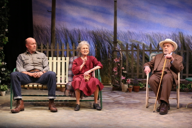 <p>Larry Bull, Lynn Cohen, and George Morfogen grab a seat.</p><br />(© Carol Rosegg)