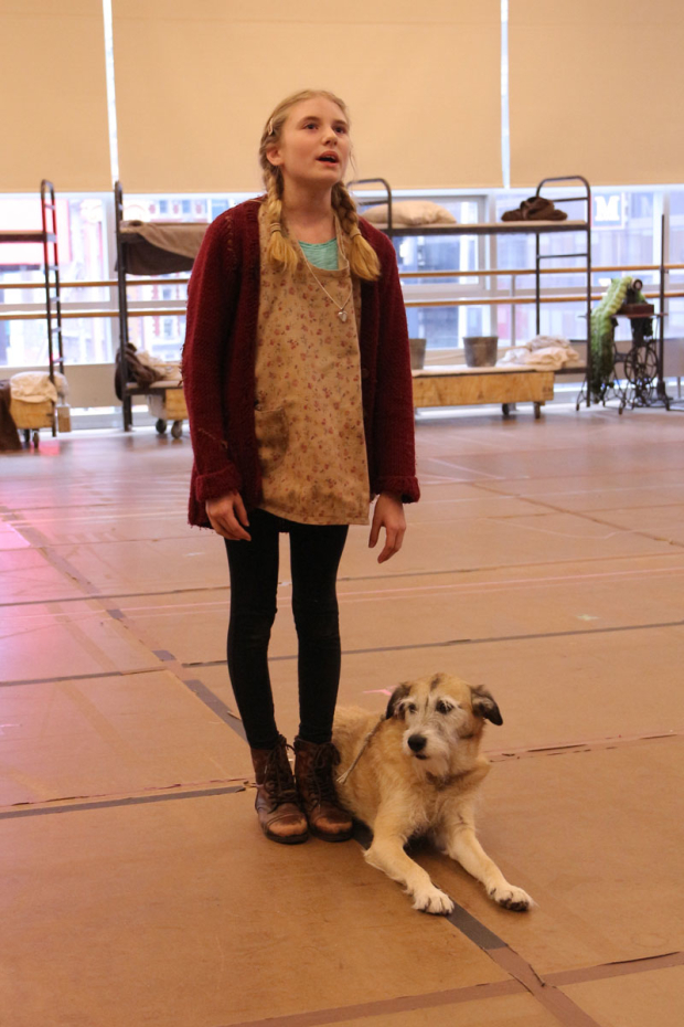 <p>Cassidy Pry performs with her canine costar Macy.</p><br />(© David Gordon)