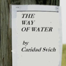 Caridad Svich's The Way of Water
