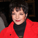 Liza Minnelli and Alan Cumming to Perform at Town Hall on March 13