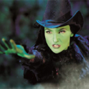Willemijn Verkaik Will Defy Gravity in Broadway's Wicked