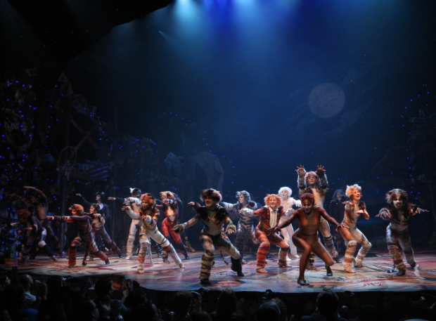 <p>A group shot of the <em>Cats</em> company during their curtain call.</p><br />(© David Gordon)