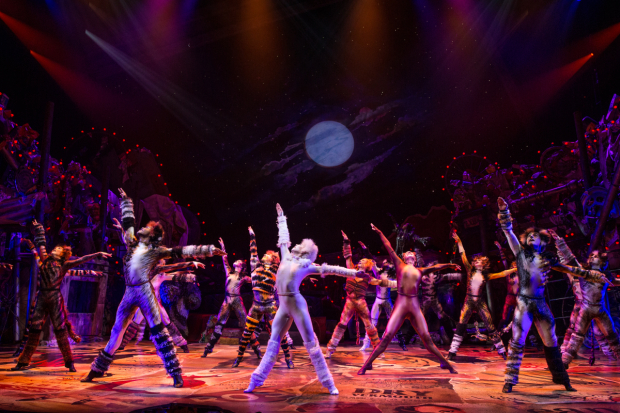 <p>A moment from the new Broadway revival of <em>Cats</em>.</p><br />(&copy&#x3B; Matthew Murphy)