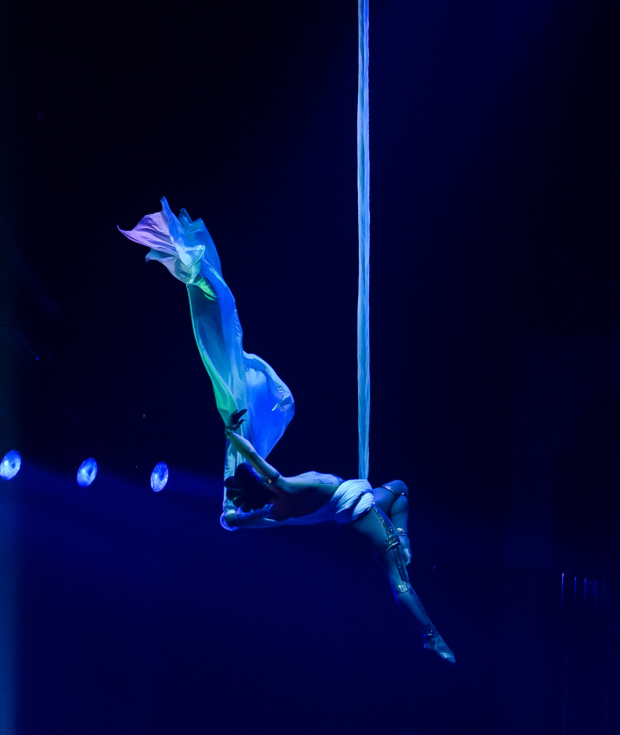 <p>A toga party turned into a aerialists show.</p><br />(© Matthew Stocke)