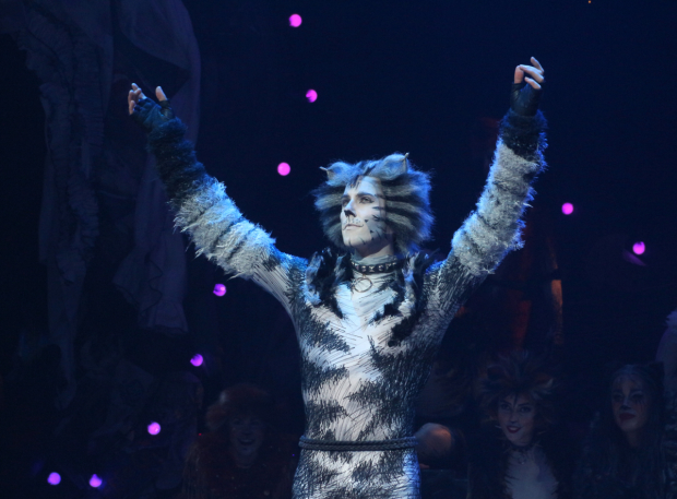 <p>Andy Huntington Jones as Munkustrap during the <em>Cats</em> curtain call.</p><br />(© David Gordon)