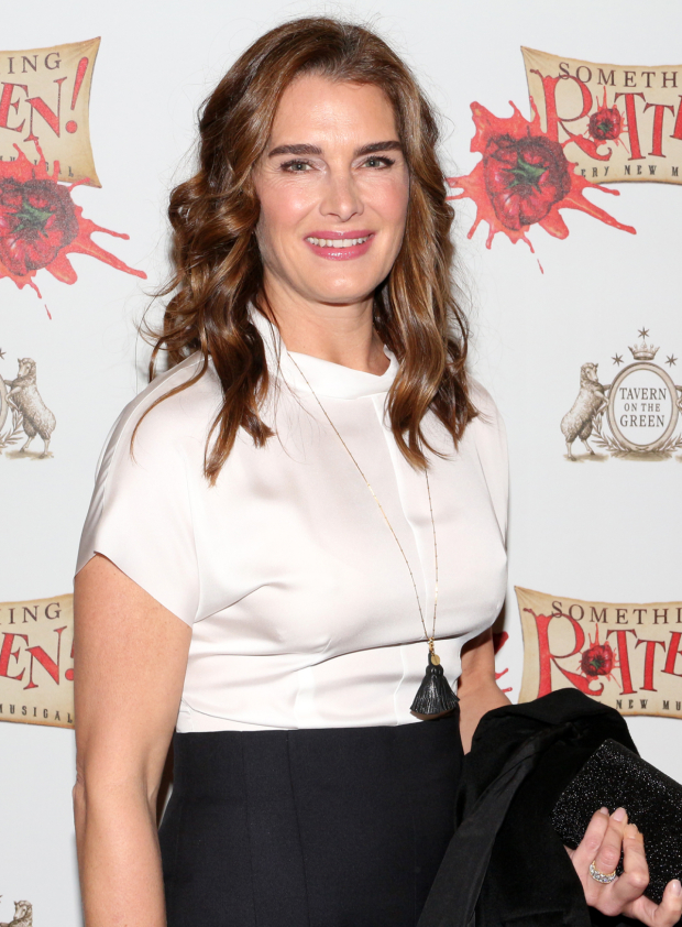 <p>Brooke Shields shows off her beautiful smile as she heads into the St. James Theatre.</p><br />(© David Gordon)