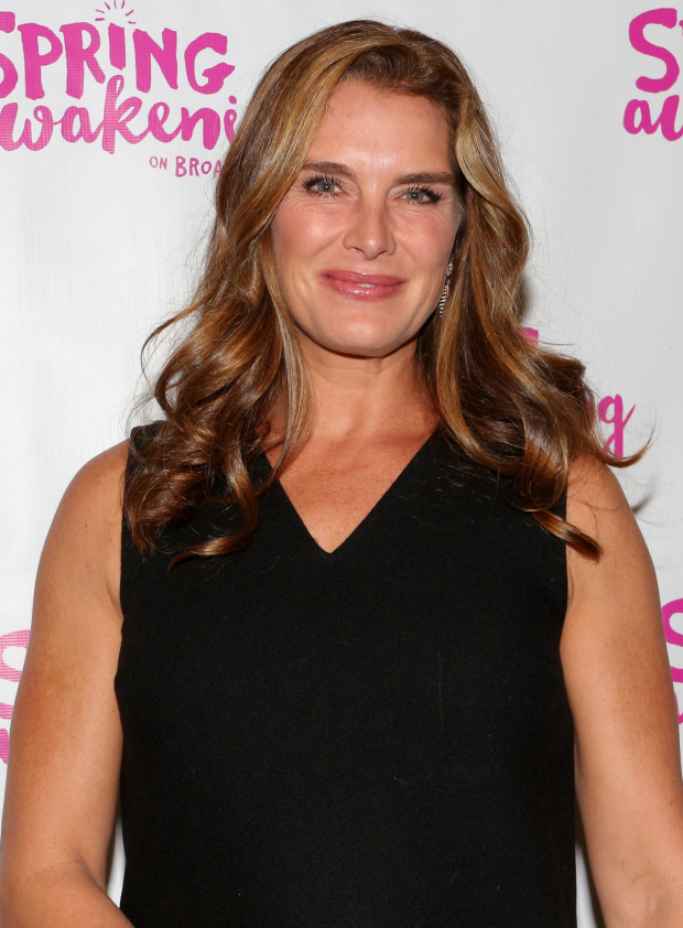 <p>Brooke Shields smiles for the cameras before the show.</p><br />(© David Gordon)