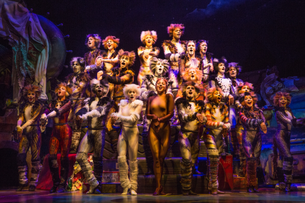 <p><em>Cats</em> returns to Broadway for its first-ever revival.</p><br />(&copy&#x3B; Matthew Murphy)