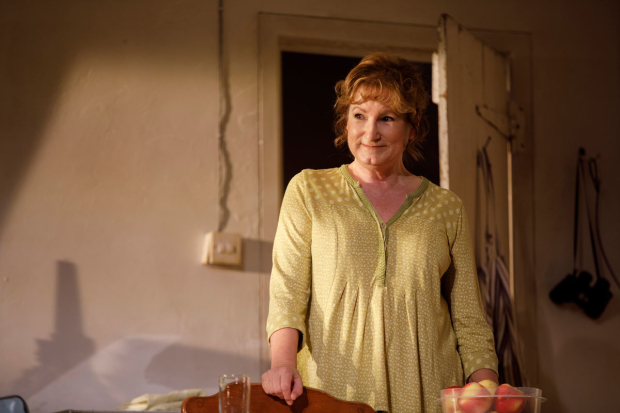 <p>Deborah Findlay portrays Hazel.</p><br />(© Joan Marcus)