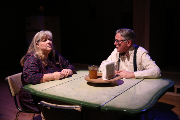 <p>Heather MacRae and Joseph Kolinski play opposite each other in <em>Come Back, Little Sheba</em>.</p><br />(© Carol Rosegg)