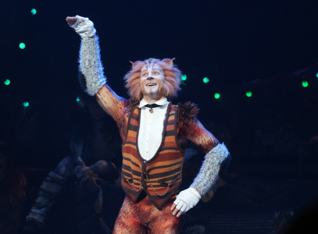 <p>Jeremy Davis as Skimbleshanks, the Railway Cat.</p><br />(© David Gordon)
