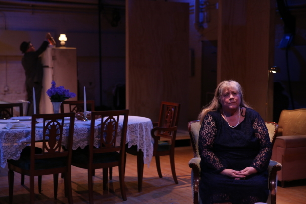 <p>Joseph Kolinski and Heather MacRae in a scene from <em>Come Back, Little Sheba</em>.</p><br />(© Carol Rosegg)
