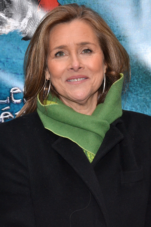 <p>Journalist Meredith Vieira smiles for the cameras before heading into the Imperial Theatre.</p><br />(© David Gordon)