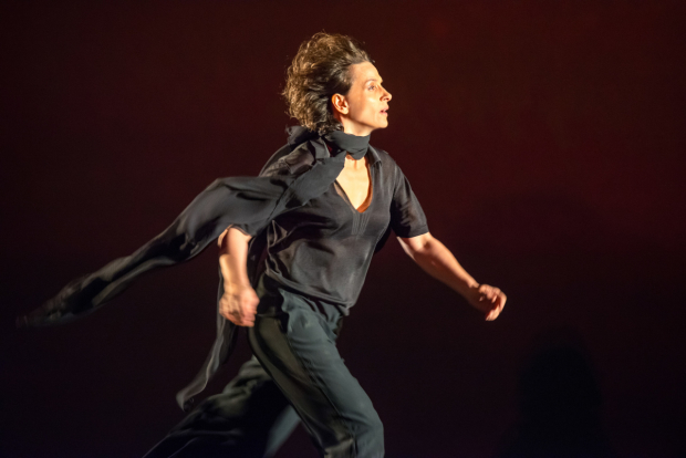<p>Juliette Binoche will play Antigone at the Brooklyn Academy of Music through Sunday, October 4. </p><br />(© Stephanie Berger)