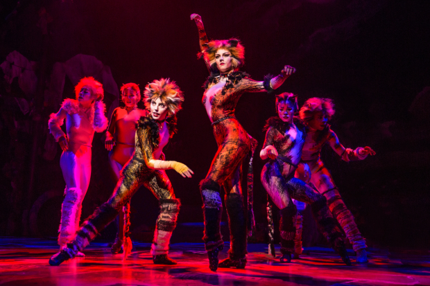 <p>Kim Fauré as Demeter and Christine Cornish Smith as Bombalurin in <em>Cats</em>.</p><br />(&copy&#x3B; Matthew Murphy)