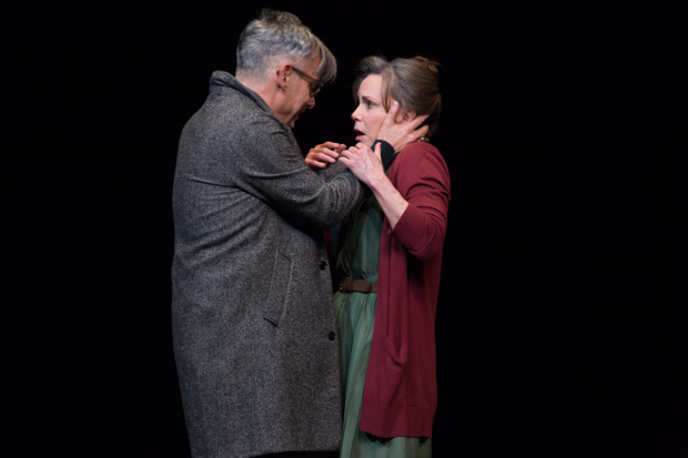 <p>Mantello and Field play son and mother in the production.</p><br />(© Julieta Cervantes)