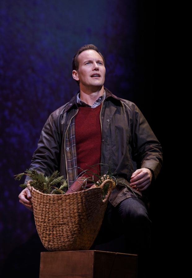 <p>Patrick Wilson plays Tommy Albright in the Alan Jay Lerner and Frederick Loewe classic. </p><br />(© Joan Marcus)