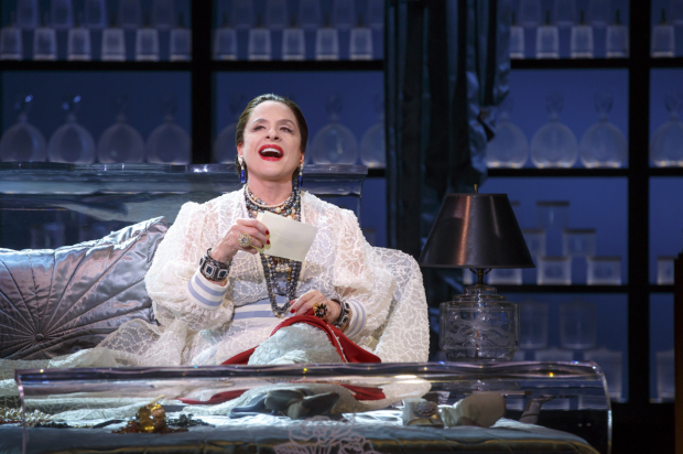 <p>Patti LuPone plays cosmetics entrepreneur Helena Rubenstein.</p><br />(© Joan Marcus)