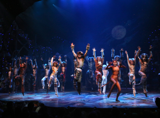 <p>The Jellicles of <em>Cats</em> take their opening-night bow.</p><br />(© David Gordon)