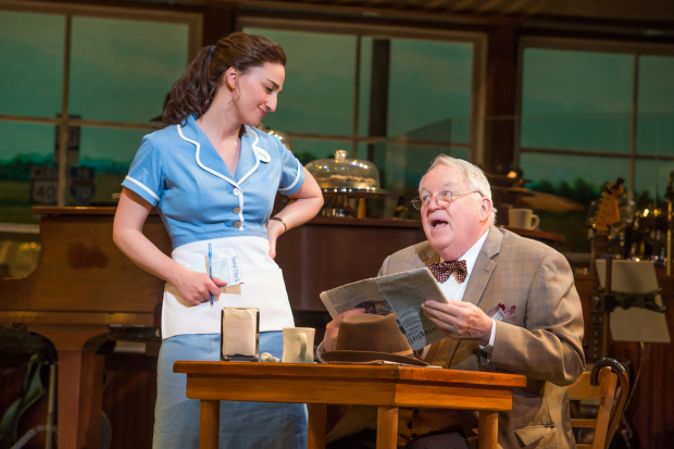 <p><em>Waitress</em> opened on April 24, 2016, and earned four Tony nominations, including Best Original Score Written for the Theatre.</p><br />(© Jeremy Daniel)