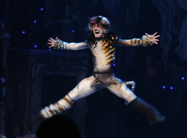 <p>Welcome back to Broadway, <em>Cats</em>!</p><br />(© David Gordon)
