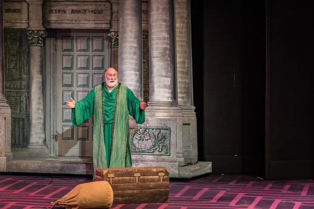 <p>Whit Reichert stars as Erronius.</p><br />(photo provided by the production)