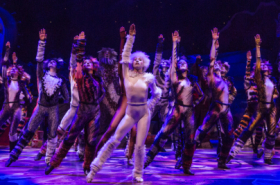 Cats, School of Rock, and More to Take Part in Fleet Week Broadway Showcase