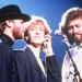Universal Theatrical Group to Develop Bee Gees Stage Musical