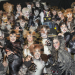 Cats Celebrates One Year on Broadway