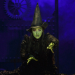 David Stone, Producer of Wicked and More, to be Honored at Spring Gala
