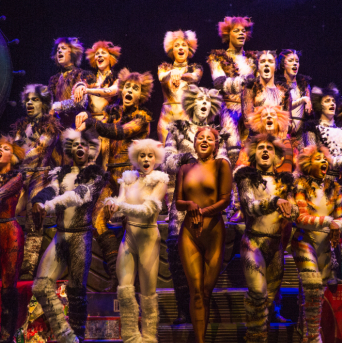 Andrew Lloyd Webber's <em>Cats</em> Returns to Broadway as First Ever Revival Opens