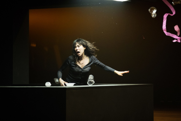 <p> Halina Reijn in the Toneelgroep&#39&#x3B;s production of <em>Obsession</em> at the Barbican</p><br />© Jan Versweyveld