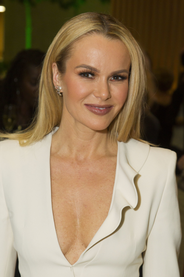 <p>Amanda Holden</p><br />© Dan Wooller for WhatsOnStage