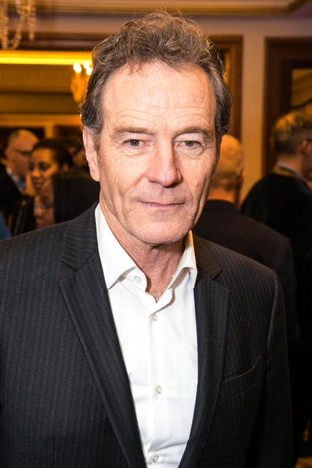 <p>Bryan Cranston</p><br />© Dan Wooller for WhatsOnStage